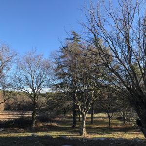 jardins Bouches-du-Rhône